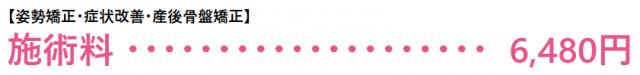 【姿勢矯正・症状改善・産後骨盤矯正】 施術料 6,480円