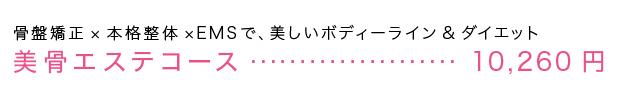 美骨エステ・・・・10.260円