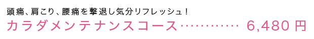 カラダメンテナンスコース・・・6.480円