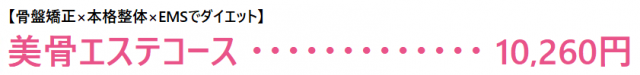【骨盤矯正×本格整体×EMSでダイエット】 美骨エステコース 10,260円